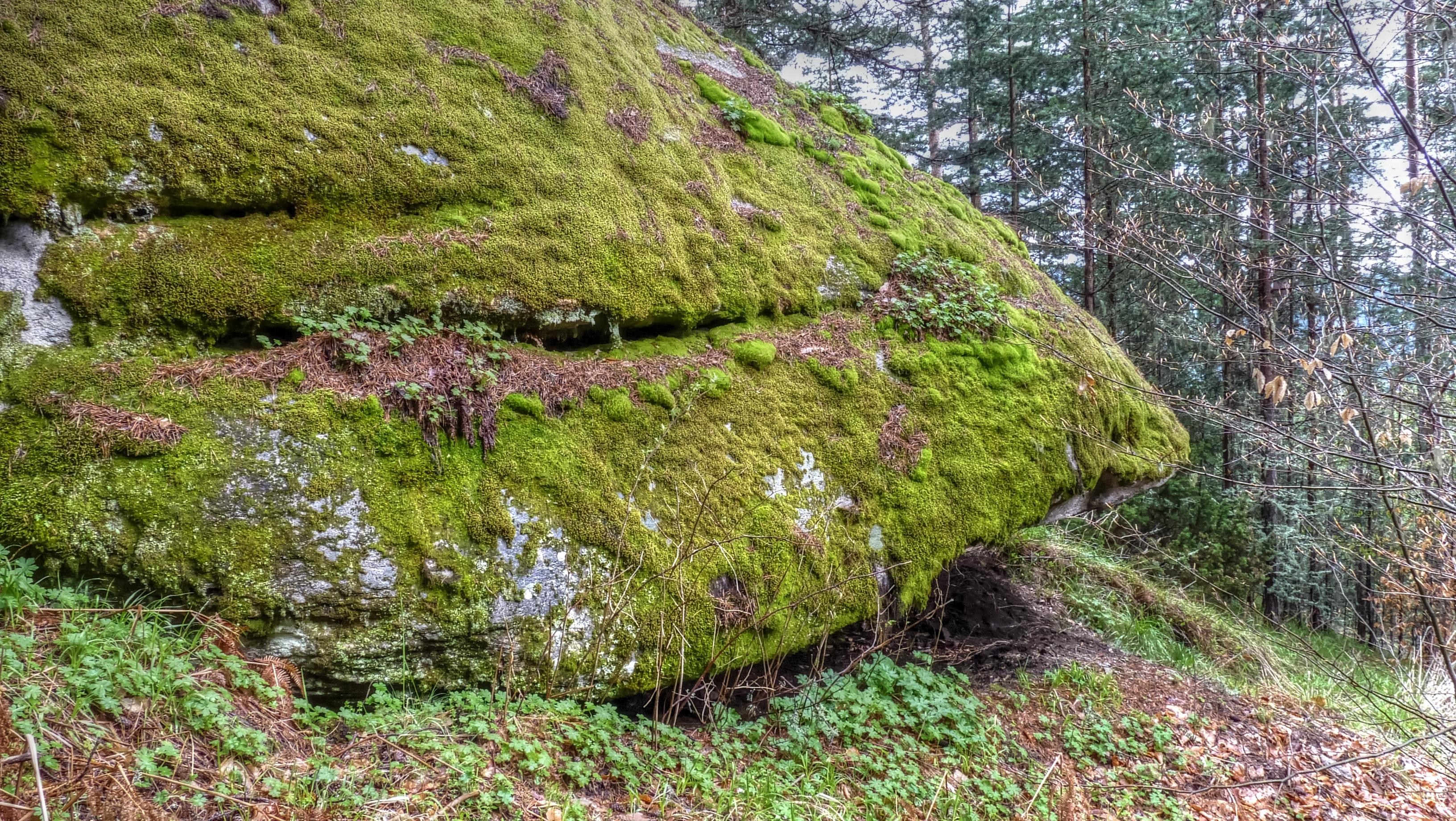 Скално светилище Козия камък